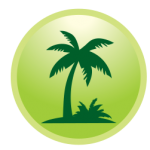 landscaping-palm