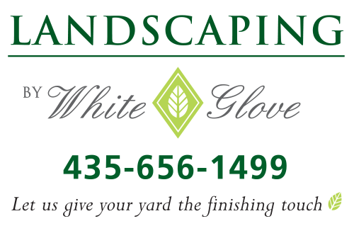 white-glove-landscaping